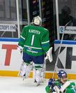 Андрей Кареев